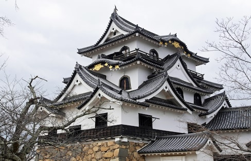 Hikone Castle: A National Treasure at 410