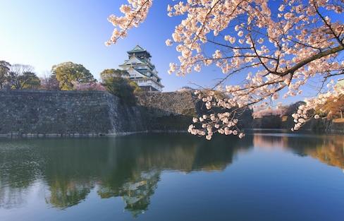 사쿠라 in 오사카: 벚꽃 명소 BEST 5