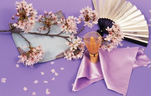 日本賞櫻花的4大禮儀守則