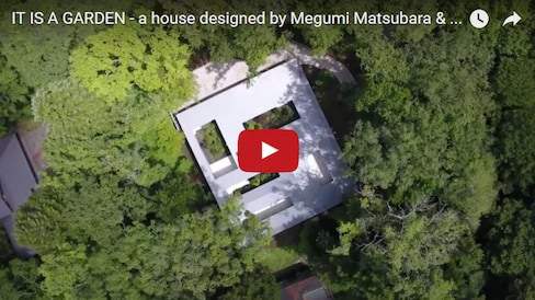 Get a Bird's-Eye View of Arboreal Architecture