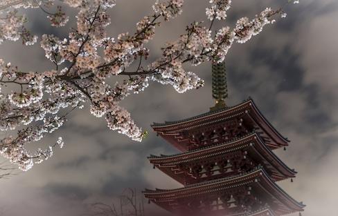 【東京半日走跳】下町文化藝術之旅!6小時玩轉淺草・上野