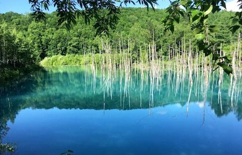 风光誌|静谧之蓝成就你的日本最北端之旅