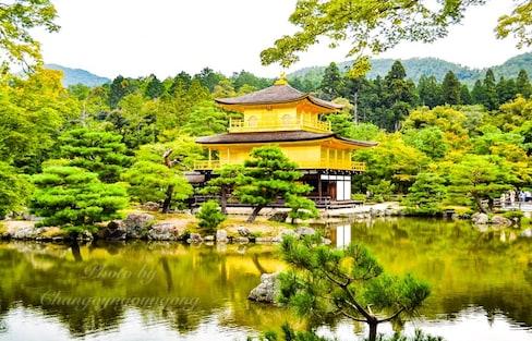 พาไปเดินคินคะคุจิ ครั้งหนึ่งในชีวิตที่วัดทอง!!