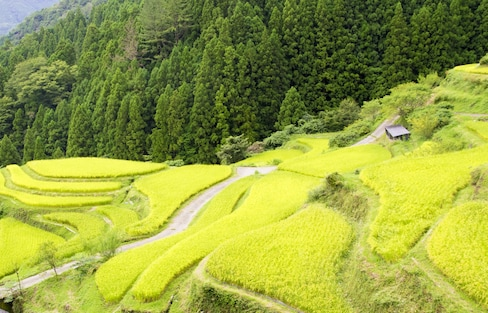 The 3 Most Beautiful Villages in Shikoku