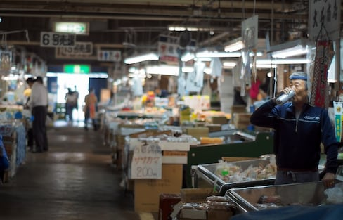 Savor Seafood & Study Reconstruction in Miyagi