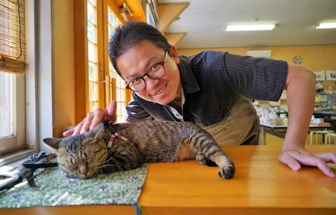 【宮城自由行】石卷漁師體驗與貓咪天堂田代島一日小旅行