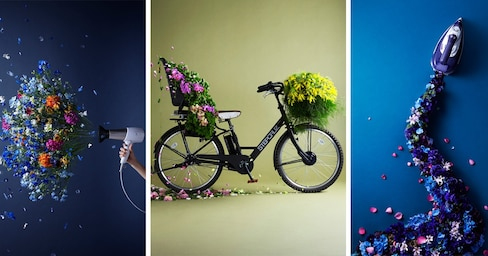 The Blooming Beauty of Everyday Objects