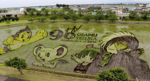 Rice Paddy Art Celebrates Manga Legend