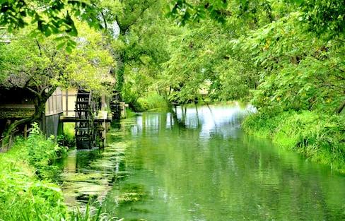 일본 시골에서 찾을 수 있는 5가지 행복