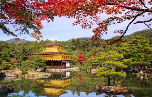 经过千百次锤炼的榜单,京都红叶景点Top5