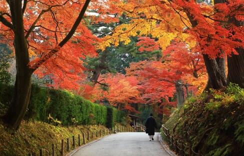 日本世界文化遺產巡禮「能量景點篇」