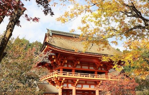 【京都自由行】到能量景點上賀茂神社參拜順便逛市集!追楓者別錯過~秋季御守限定販售中!