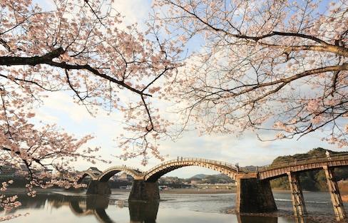 10 Reasons to Visit Yamaguchi