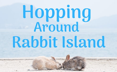 Hopping Around Rabbit Island