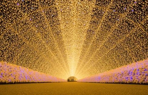 Top 5 Winter Illuminations Outside of Tokyo!