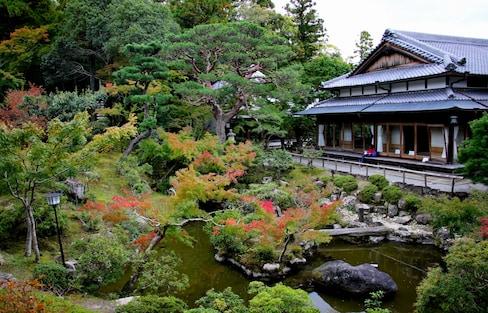 Top 10 Hidden Spots in Nara