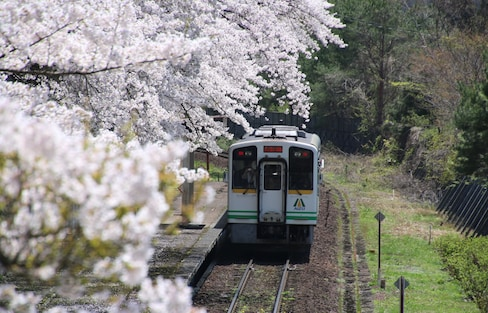 Connecting the City with Nature in Aizu