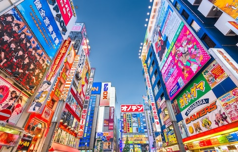 Step Inside One of Akihabara's Weirdest Shops
