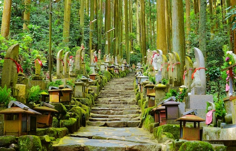 Five Secret Spots in Nara You HAVE to Visit