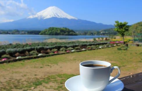 【東京出發一日小旅行】富士山美景與咖啡一次滿足!漫步河口湖望山看湖賞花悠閒遊