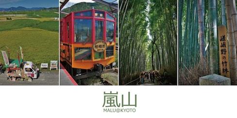 【京都自由行】龜岡站田野中出發的嵐山觀光小火車與嵐山竹林小徑