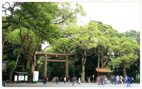 【東京深度之旅】 沐浴在「明治神宮」的森林芬多精中,順道帶走滿滿的正能量