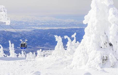 【日本東北】雪季必看奇景!守護日本海山脈上的雪怪「樹冰」