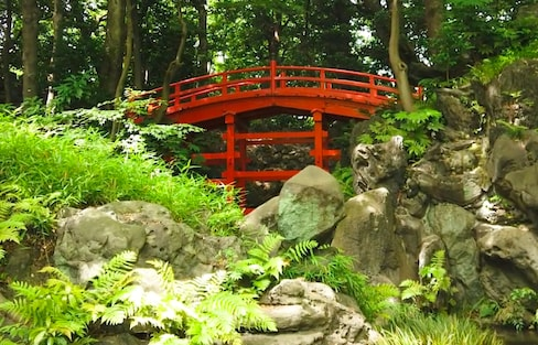 One of the Oldest Japanese Gardens in Tokyo