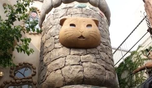 'Purrfect' Fairy Tale Theme Park for Cat Fans