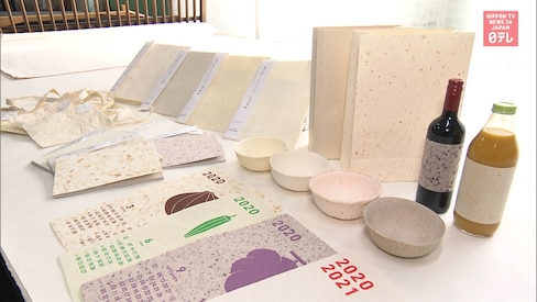 Making Japanese Washi Paper from Food Waste