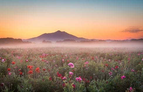 """日本旅行:与富士山齐名的""""紫峰""""——筑波山是一座怎样的神山?"""