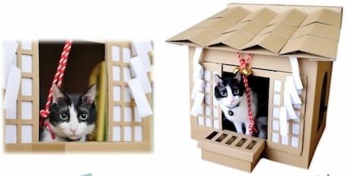 Worship Your Feline Friend with Its Own Shrine
