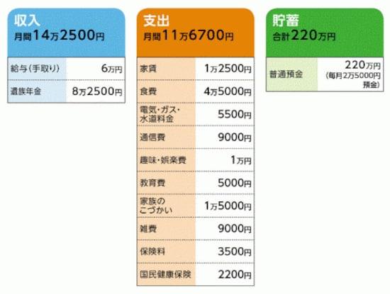 「ぱんこさん」の家計収支データ