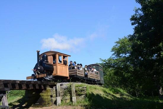 木造の橋梁を渡る汽車