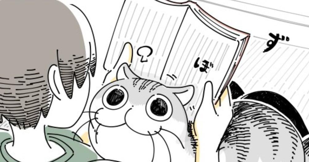 本を読んでいると甘えてくる猫。本を優先にしていたら思わぬ攻撃にノックアウト