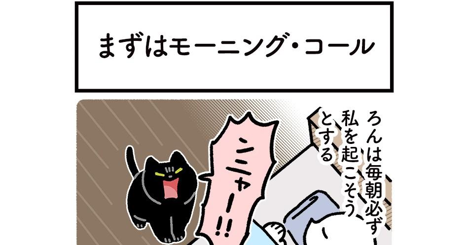 """毎朝必ず起こしにくる猫 なかなか飼い主が起きない時は…進化を続ける """"起こし方"""" に癒される"""
