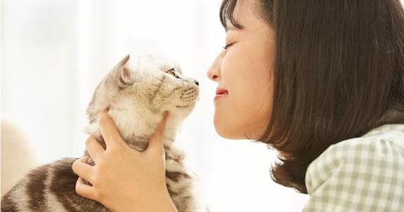飼い猫が死んでしまい注文キャンセルした爪研ぎ その後の店の対応に20万人が絶賛「どんだけ神対応なんだ!」「泣いてしまいました」