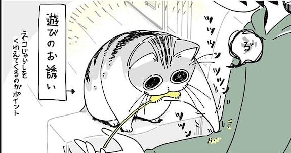 遊んでいる途中いきなりフリーズするネコ 飽きたのかな?と思いきや…ネコとの遊びあるあるに共感の嵐