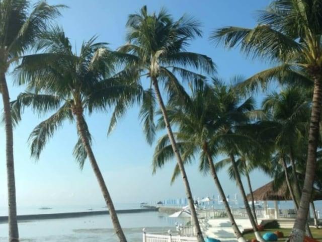「旅行で行ったセブ島の写真です。ホテル前のビーチ。ちょうど干潮でした」(柔ママさん)