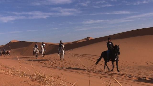 砂漠で馬乗りの耐久レース、「ギャロップ・オブ・モロッコ」