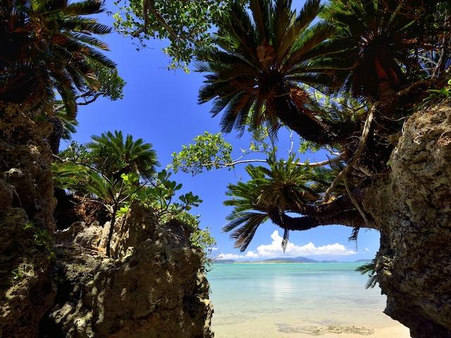 『ちゅらさん』の舞台・小浜島観光 ゆったり島めぐり