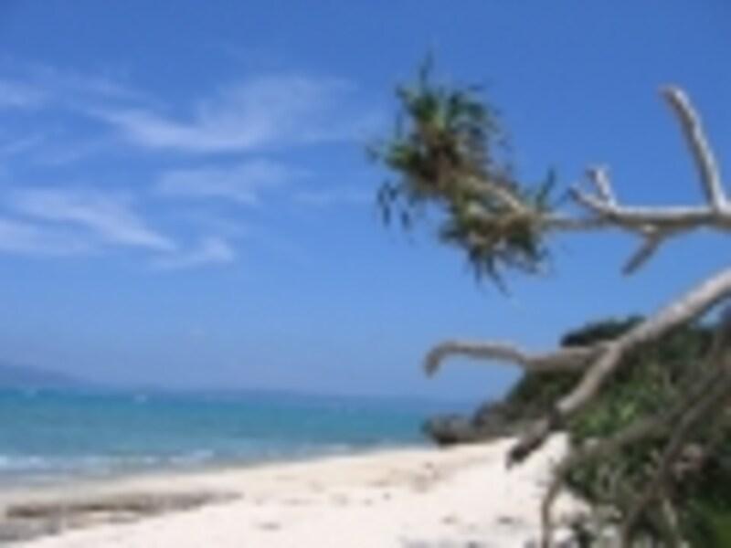 古宇利島の楽しみ方!ビーチやハートロックetc