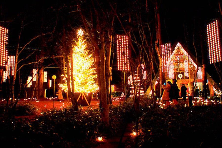 冬の軽井沢観光ならココ!おすすめスポットと温泉