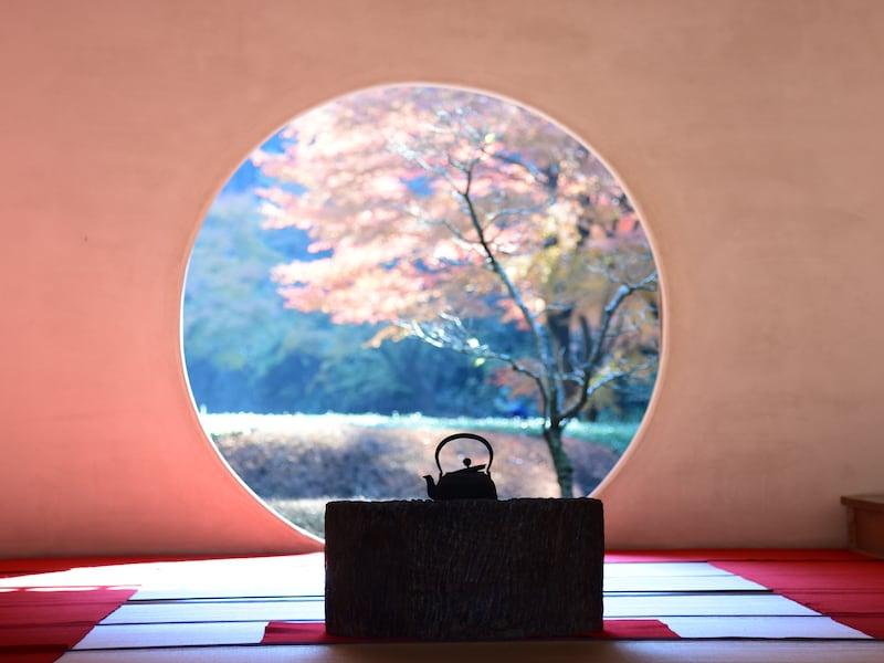 鎌倉の「絵になる」紅葉スポット5選【2017年版】