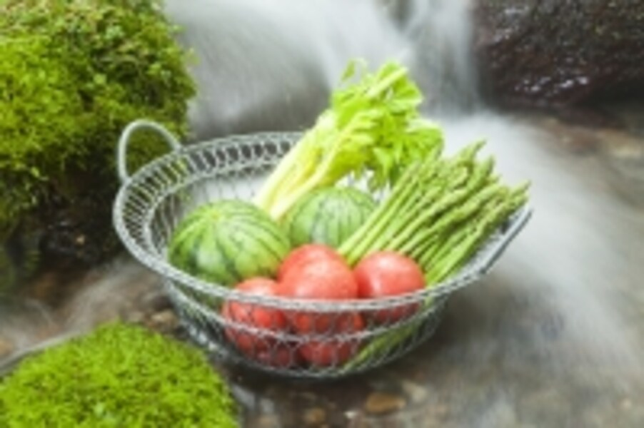 沢水,湧き水,井戸水,アウトドア,屋外,食中毒,健康,ヘルスケア,食品衛生