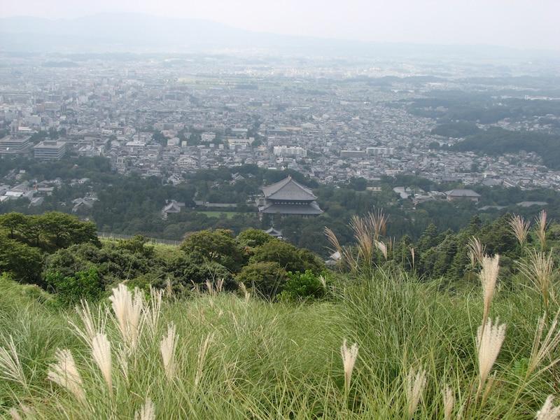 もっと奈良を味わいたい 二度目の奈良観光はココへ!