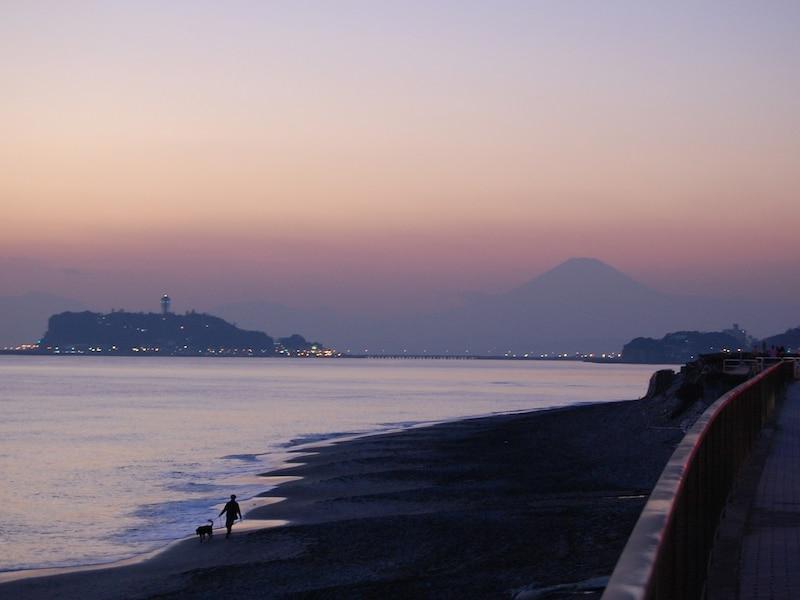 冬の鎌倉観光、厳選4プラン!美術館、絶景、花、イベント