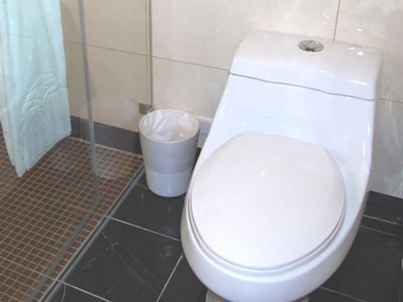 トイレットペーパーが流せない?台湾のトイレ事情
