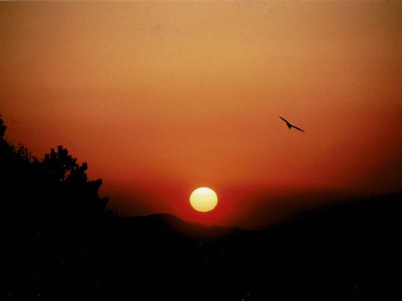 鎌倉・江ノ島 初日の出が拝めるおすすめスポット2020