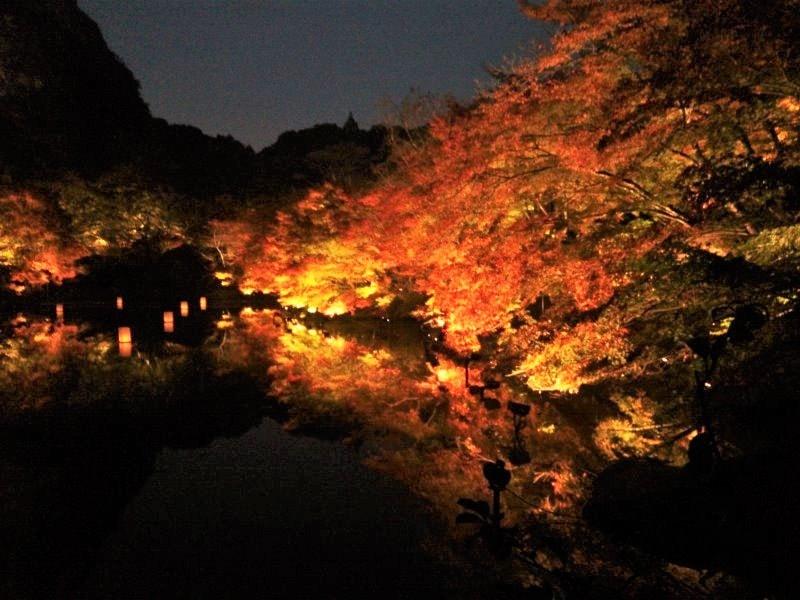 御船山楽園 絶景!日本最大級の紅葉ライトアップ